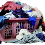 Bedbugs Dirty Laundry