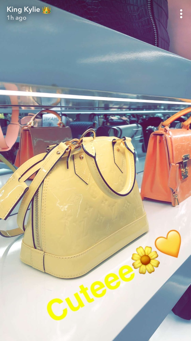 Kylie Jenner Handbag Closet