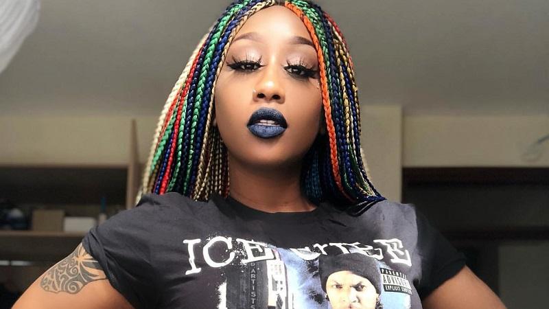 victoria-kimani-colorful-braids-hairstyle