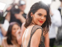 We Bet You've Never Seen The Version Of Kendall Jenner's Naked Dress Before