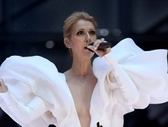 Celine Dion Wore A Giant Mutton-Sleeved Gown To 2017 Billboard Music Awards